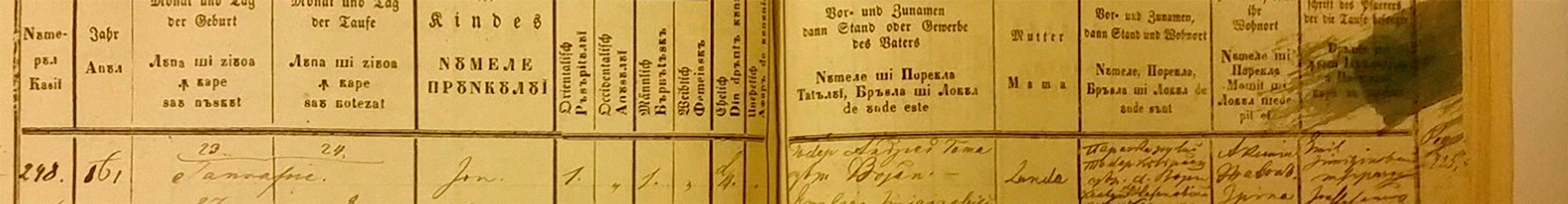 Ion-Toma-birth-record-1861